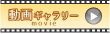 動画ギャラリー width=